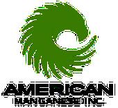 http://www.americanmanganeseinc.com/